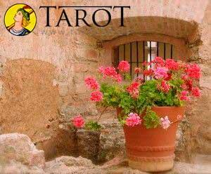 El Ritual de la Maceta - Tarot10