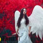 El ángel del Amor - Tarot10