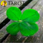 Hechizo Hindú para la buena suerte - Rituales y hechizos - Tarot10