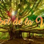 la simbología del árbol de la vida
